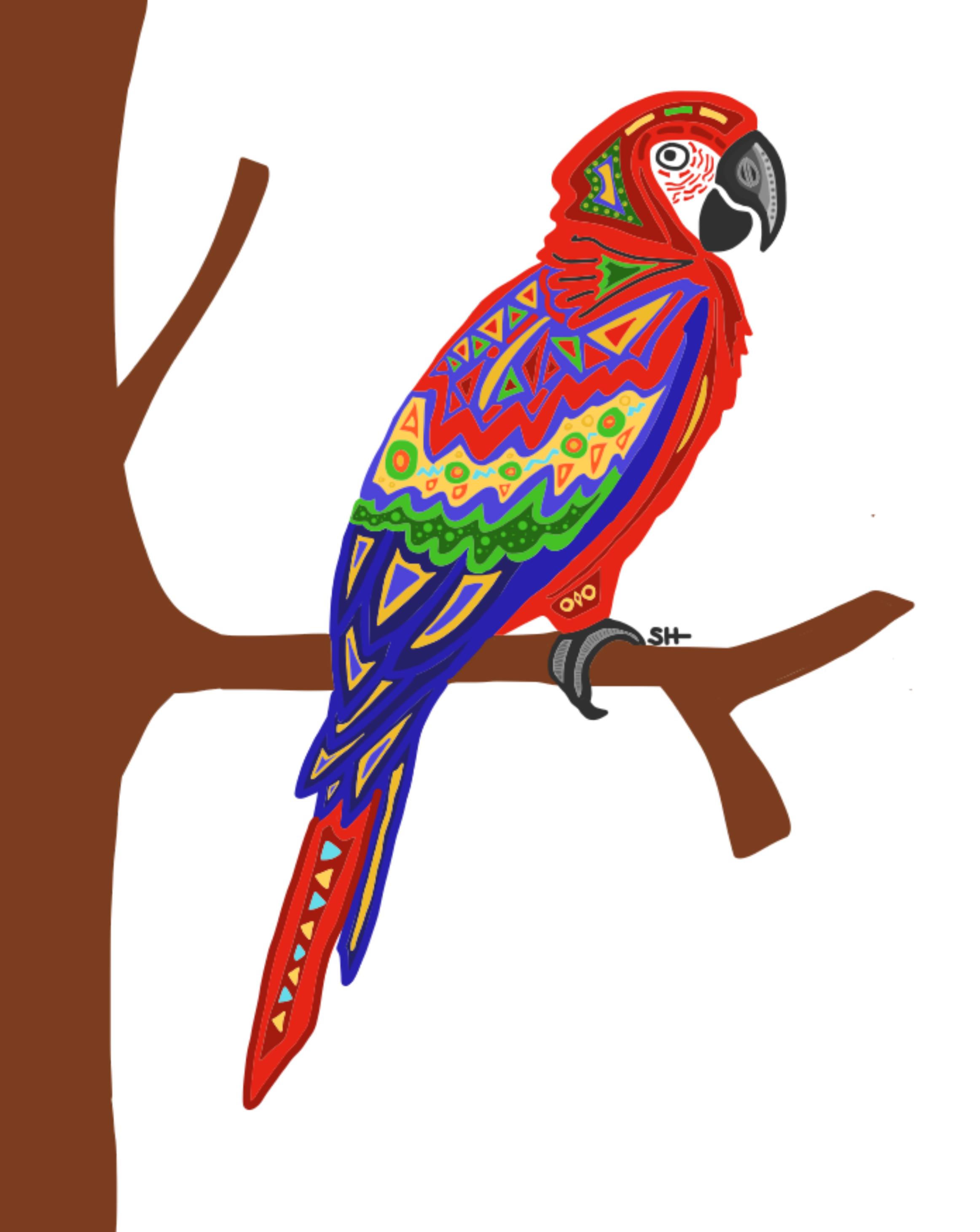 Parrot 8x10