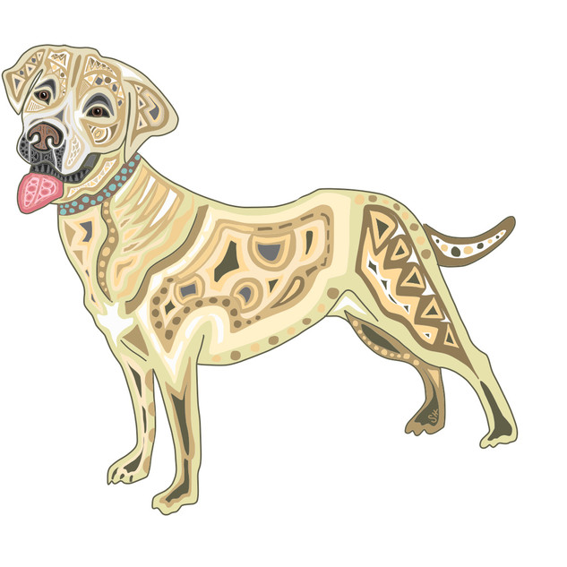 Sarah Hiers Design Yellow Lab Drawing