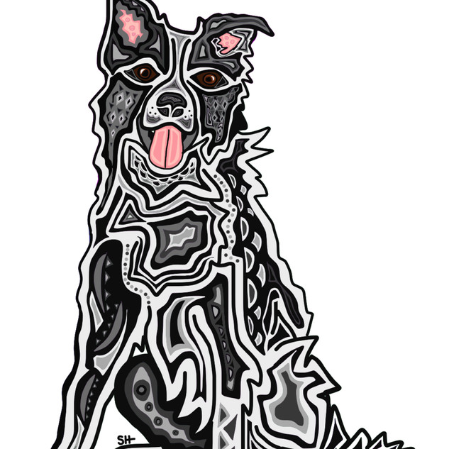 Sarah Hiers Design Custom Pet Art Border Collie Drawing