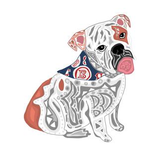 Sarah Hiers Design Fenway Bulldog Drawing