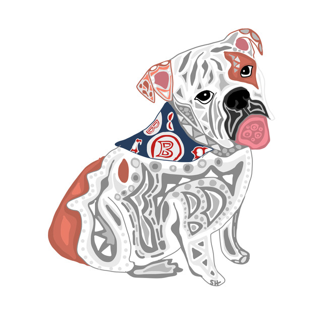 Sarah Hiers Design Fenway Bulldog Drawing