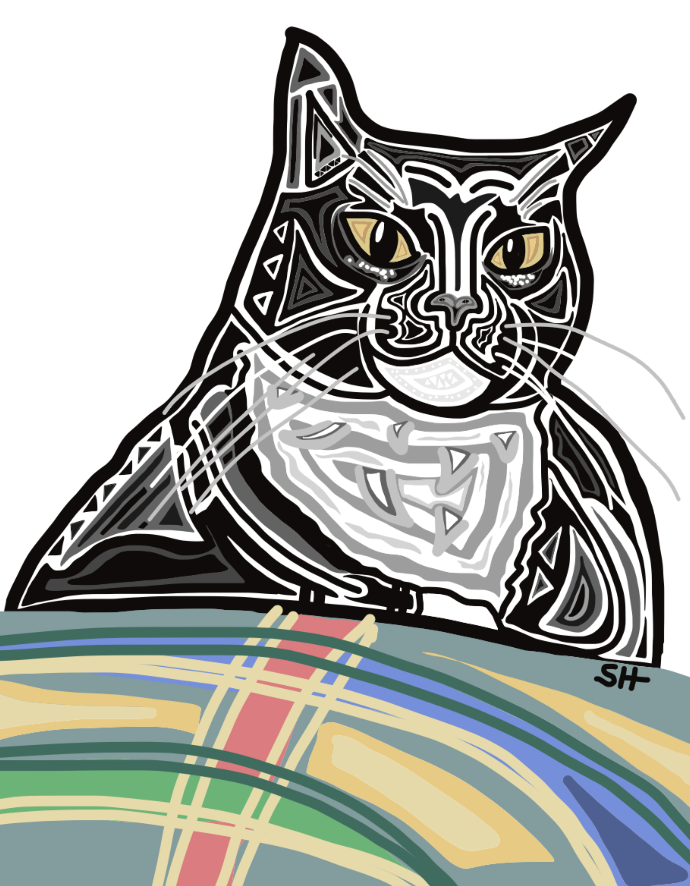 Jessies Cat 8x10