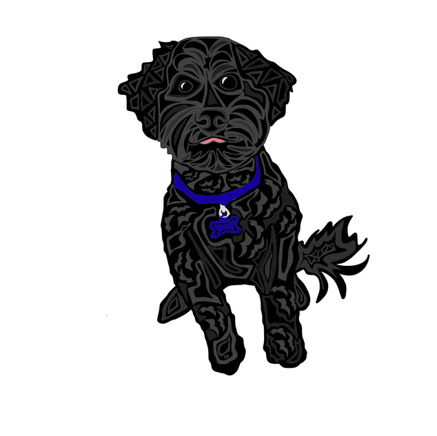 Sarah Hiers Design Black Poodle Custom Pet Portrait Art