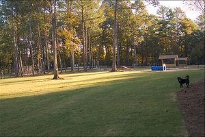 Dacula, GA Dog Park
