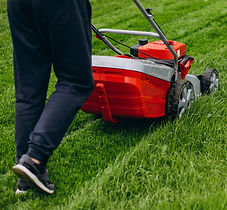 man-cutting-grass-with-lawn-mover-back-y