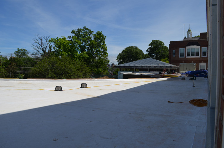 The green roof almost ready
