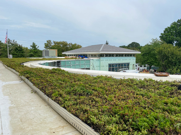 Green roof installed