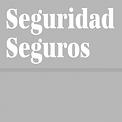 logo_seguridad_seguros_1477398138297.fw.