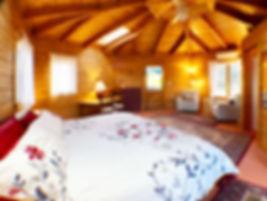 Single_Room.jpeg