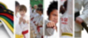 Martial arts, taekwondo
