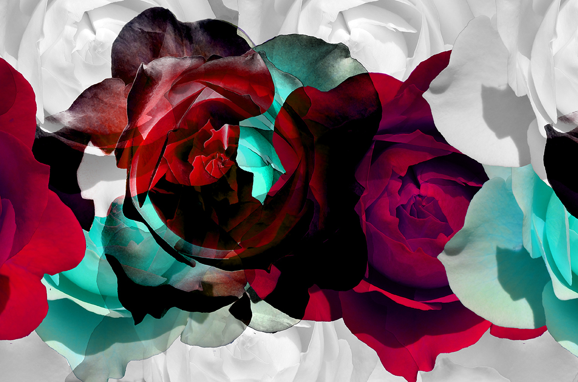 rosesbleues2bdef2