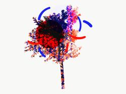 cerisiervirgulescouleurs2