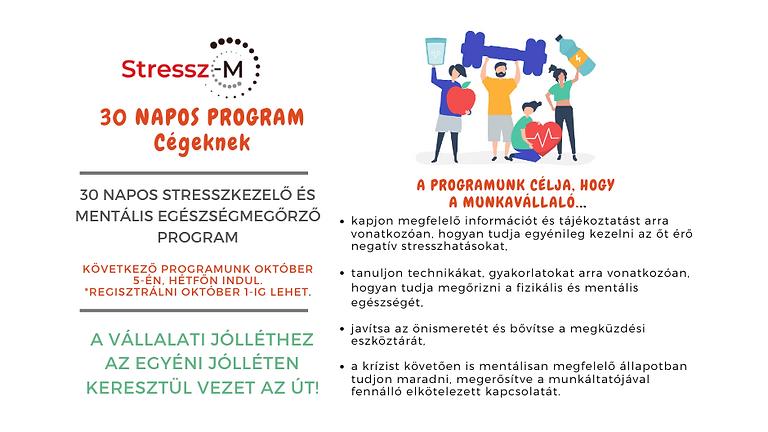 30 Napos Stresszkezelő és Mentális Egészségmegőrző Program Magánszemélyeknek
