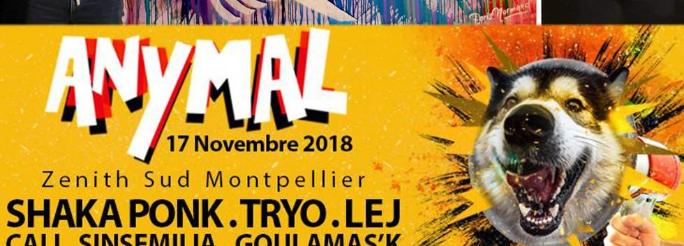 Remi gaillard, Bruno Caliciuri, Anymal festival Montpellier