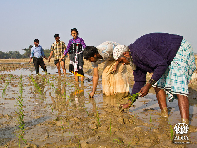 The Plight of Farmers in Bangladesh