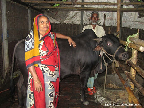 Firoza with her cow.jpg