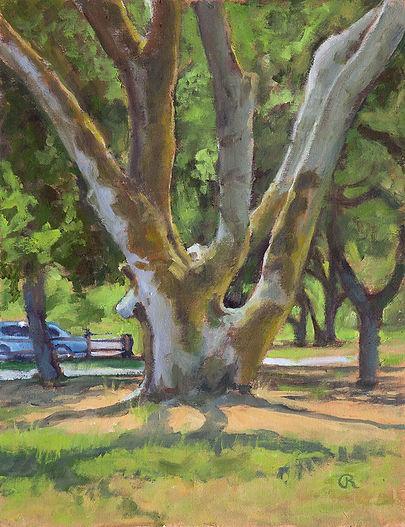 Woodpecker-Tree.jpg