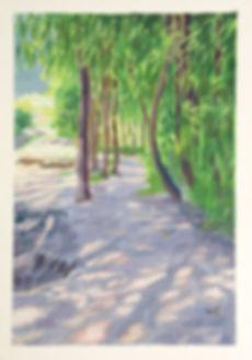 Sandy-Bank.jpg