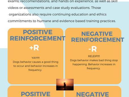 Behaviorist, Behavior Consultant, Trainer, or marketing terms?