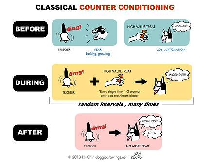 counterconditioning-lilichin.jpg