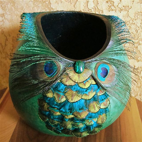 Peacock Feathered Gourd
