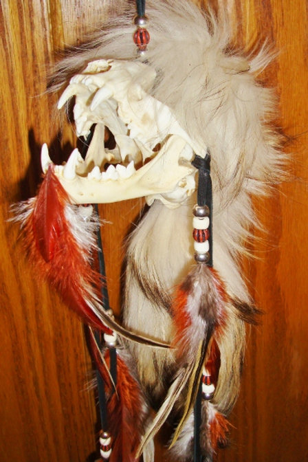 Beatnick Bobcat Spirit Chaser