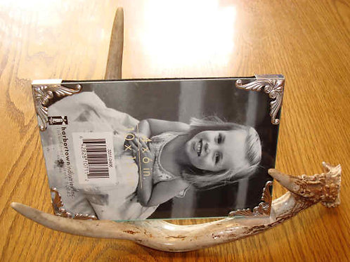 Antler Picture Frame Stand