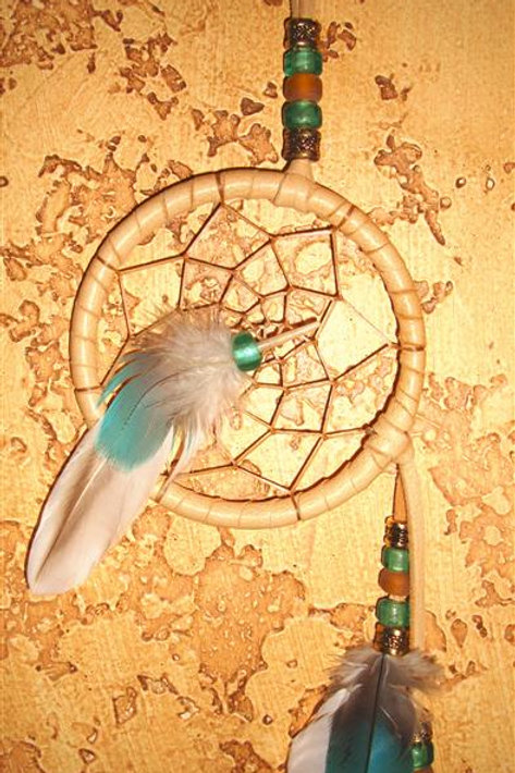 Molted Parrot & Duck Feather Dream Catcher