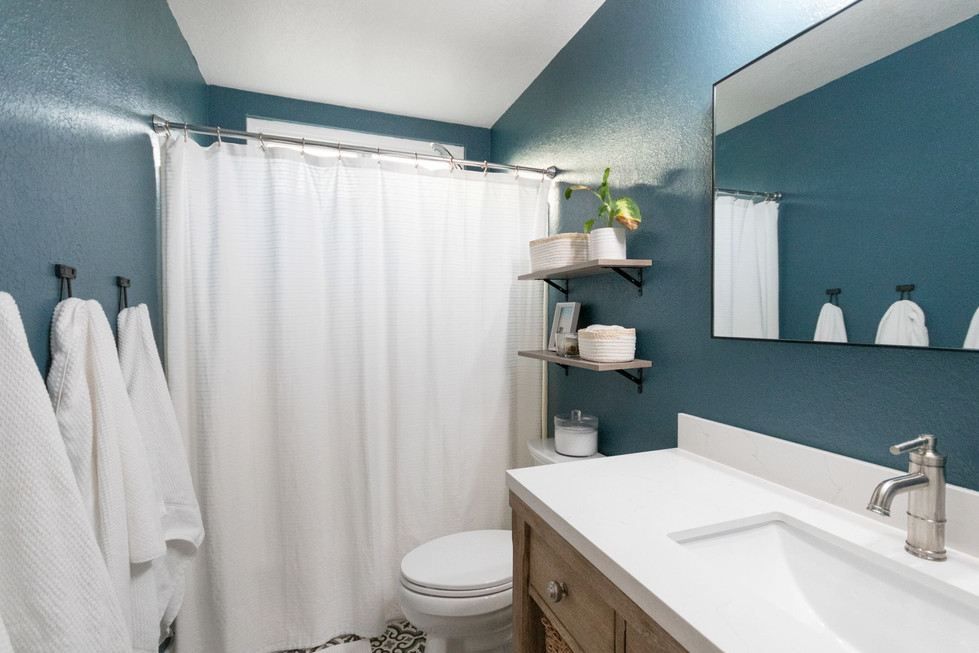 Updated Hall Bathroom