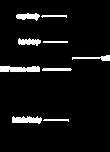 detail01.png