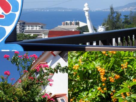 沖縄🌴ジュニアダイバー🌴恩納村🌴ハレクラニ沖縄🌴