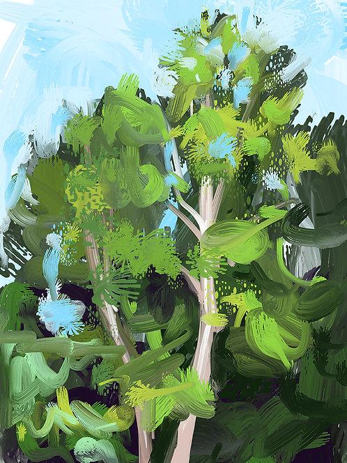 """""""Birch Trees II"""""""