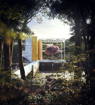 PLANT CENTER 01.jpg