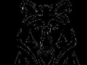 Logo 02 transparent_edited.png