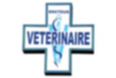 21814-clinique_veterinaire_de_l_europe_4