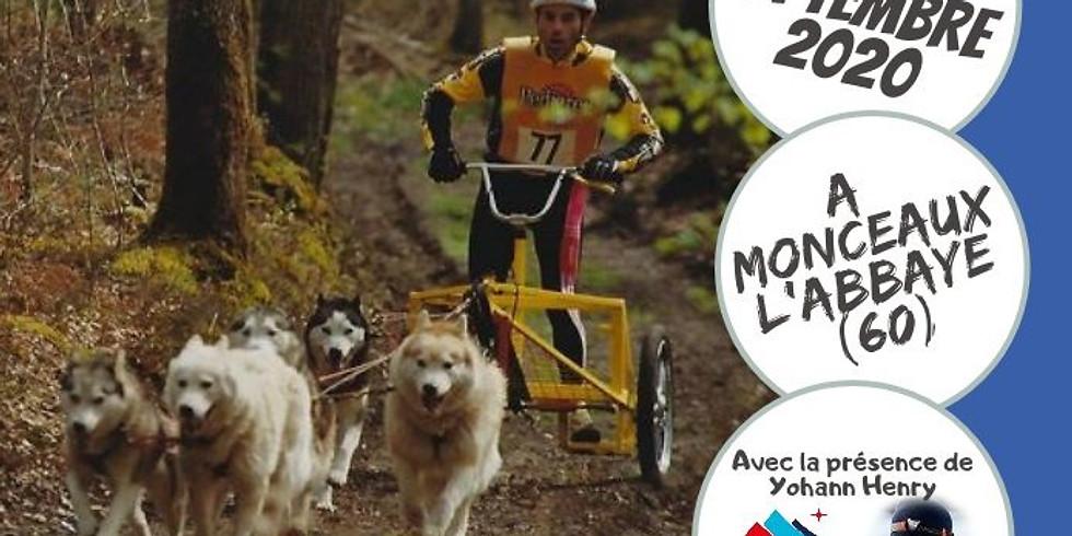 Course de chiens de traîneaux FFPTC à Monceaux l'Abbaye