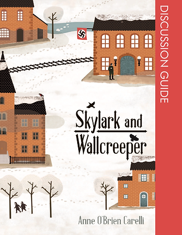 SkyWall_Discussion GuideCover_Page_01.pn