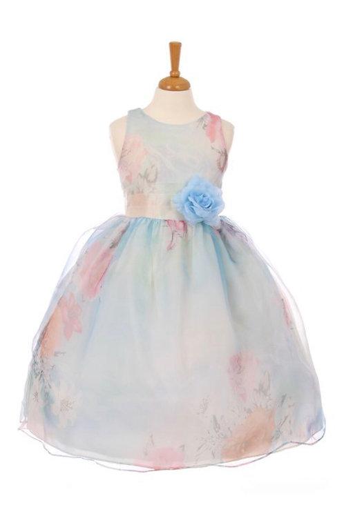 Organza Print Dress
