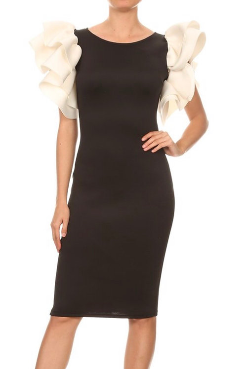 Contrast Ruffle Sleeve Dress