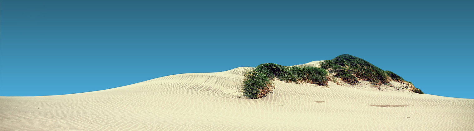 Dunes at Sandbanks