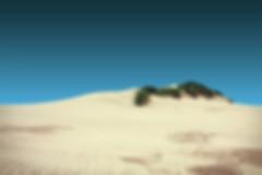 Dune, désert, sable, ocean, blog, suisse, coton biologique
