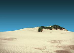 Nitzanim Sand Dunes