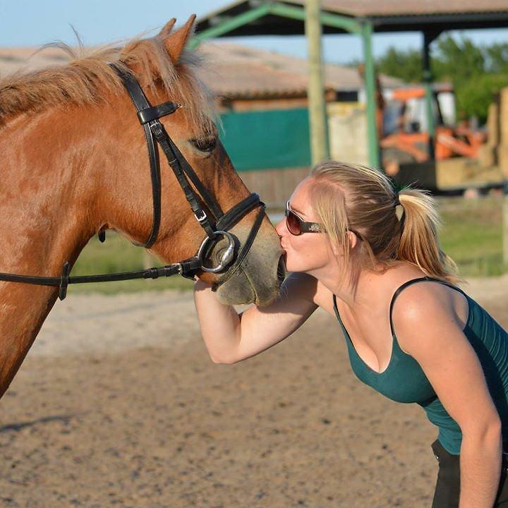 Cours particulier poney L'Oxer de Bellev
