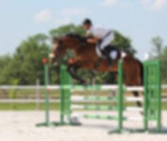 Oxer Equitation Merignac 1.jpg