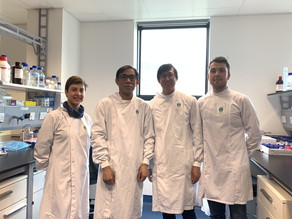 Collaboration with Prof. Wenxin Wang on Science Foundation Ireland (SFI) Project