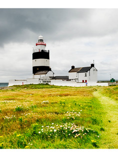 Viewings of Ireland
