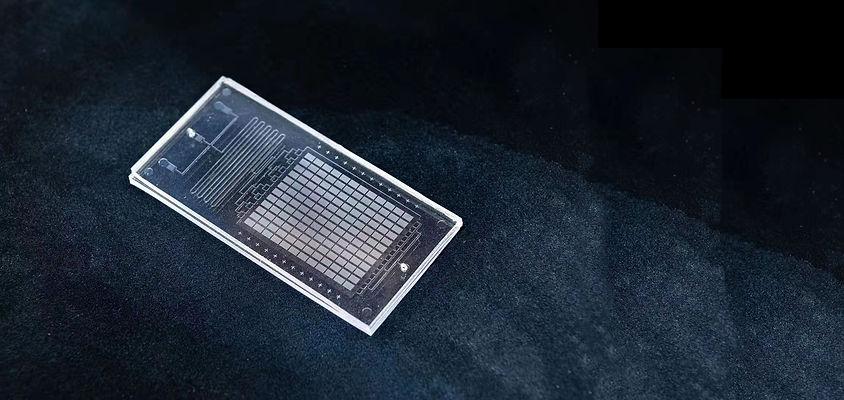 MiNAN PDMS chip-4.jpg