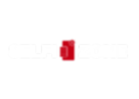 logo selfie zone - blanc.png