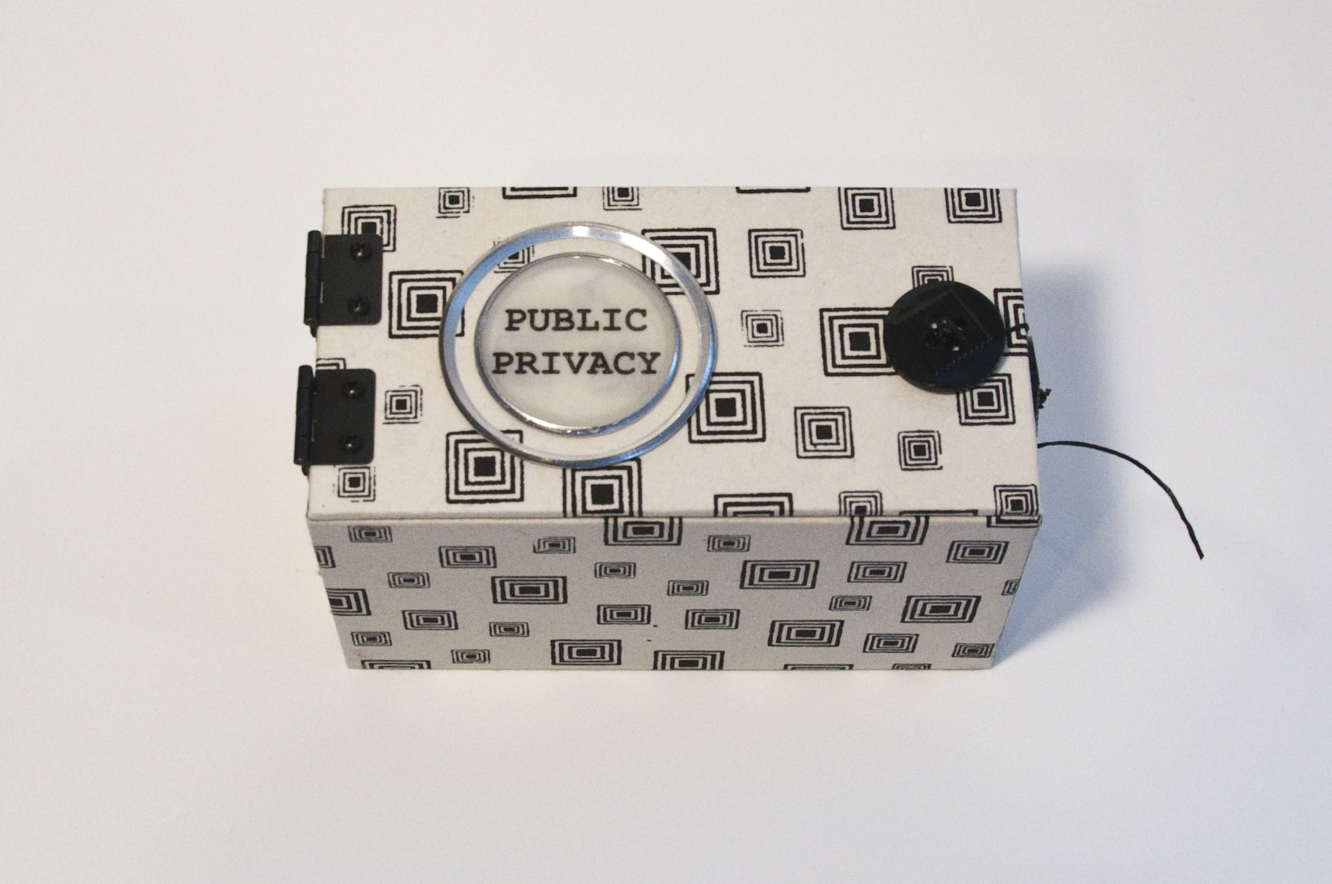 Public Privacy - Ginger Burrell