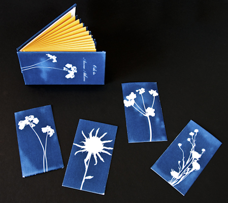 Ode to Anna Atkins - Ginger Burrell